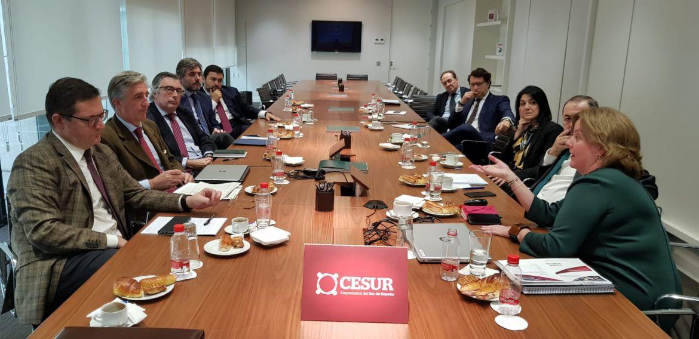 La Comisión de Industria de CESUR se reúne con altos cargos de la Consejería de Empleo, Empresa y Comercio