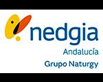 Nedgia Andalucía