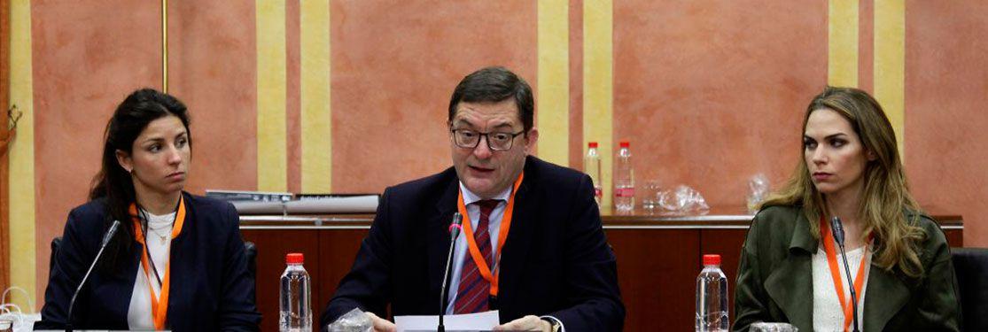 Intervención Parlamentaria de CESUR sobre el Proyecto de Ley de Formación Profesional en Andalucía