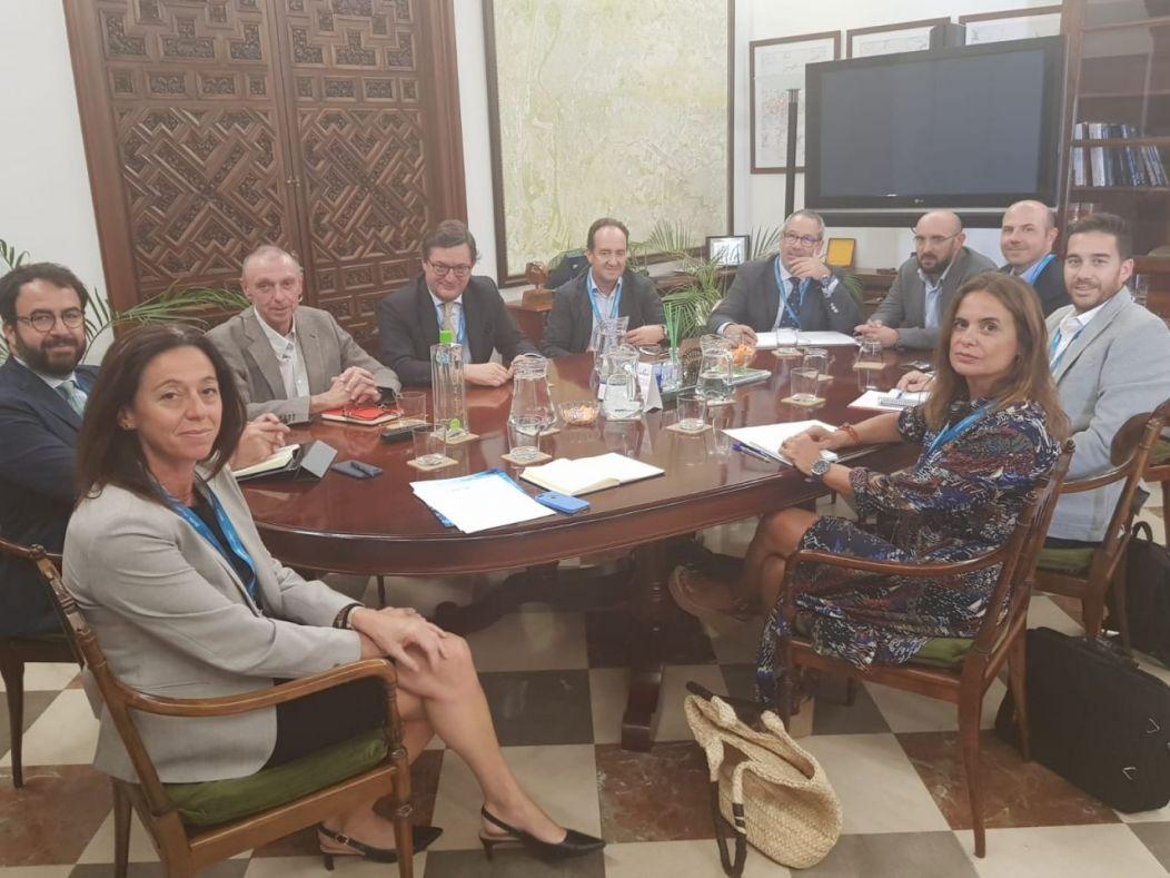 Comisiones de Trabajo CESUR